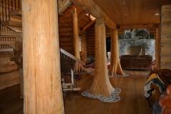 interior-trees